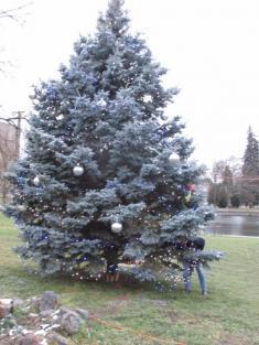 Rozsvěcení vánočního stromu 2.12. 17